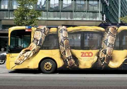 zoo gerilla pazarlama