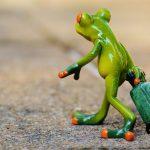 Kişisel Gelişimin Anahtarı: Kaçmak!